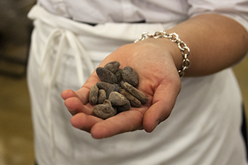 Anna Halpin-Healy '13 holding a handful of beans