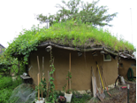 Dancing Rabbit Ecovillage