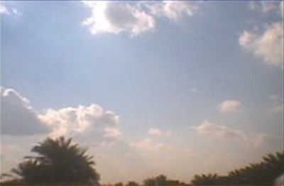 Blue sky, white clouds, and dark palms in Iraq