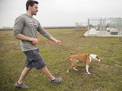 Man in Grinnell College shirt walks a dog at animal shelter