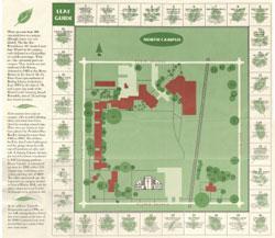 North Campus Leaf Guide