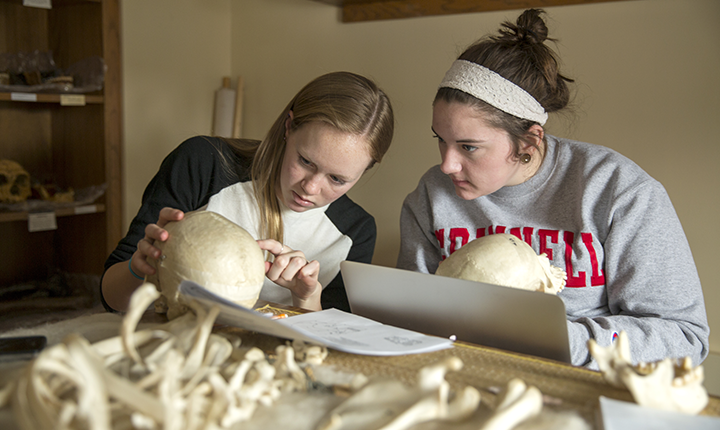 Chloe Briney and Nora Coghlan viewing human skulls