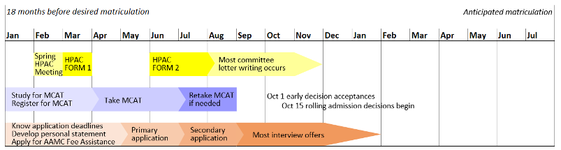 A typical timeline for a student's application year for a health-professional school. Full details of all steps are in the text on this page.