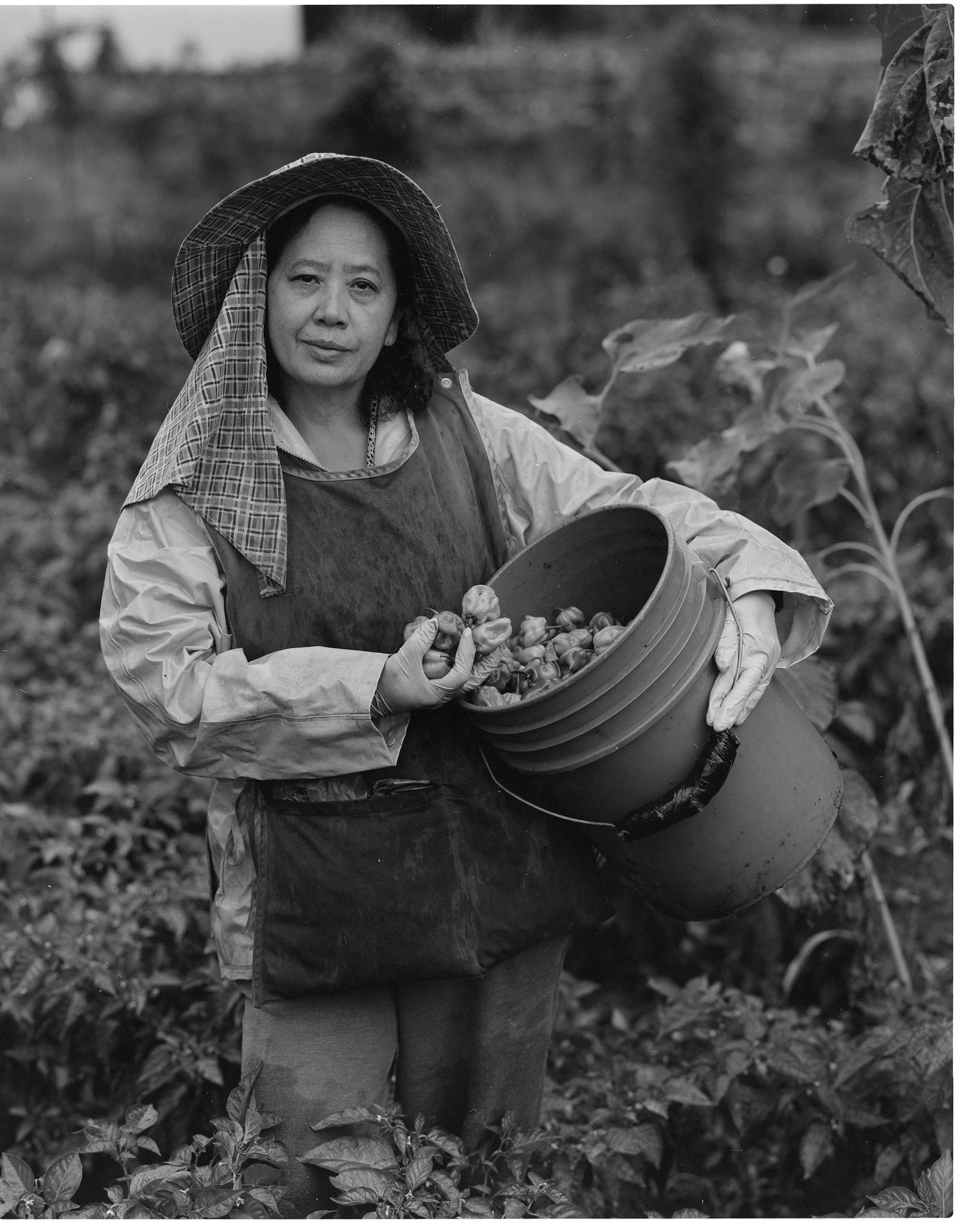 Middle-aged farmer with a bucket full of her farm produce