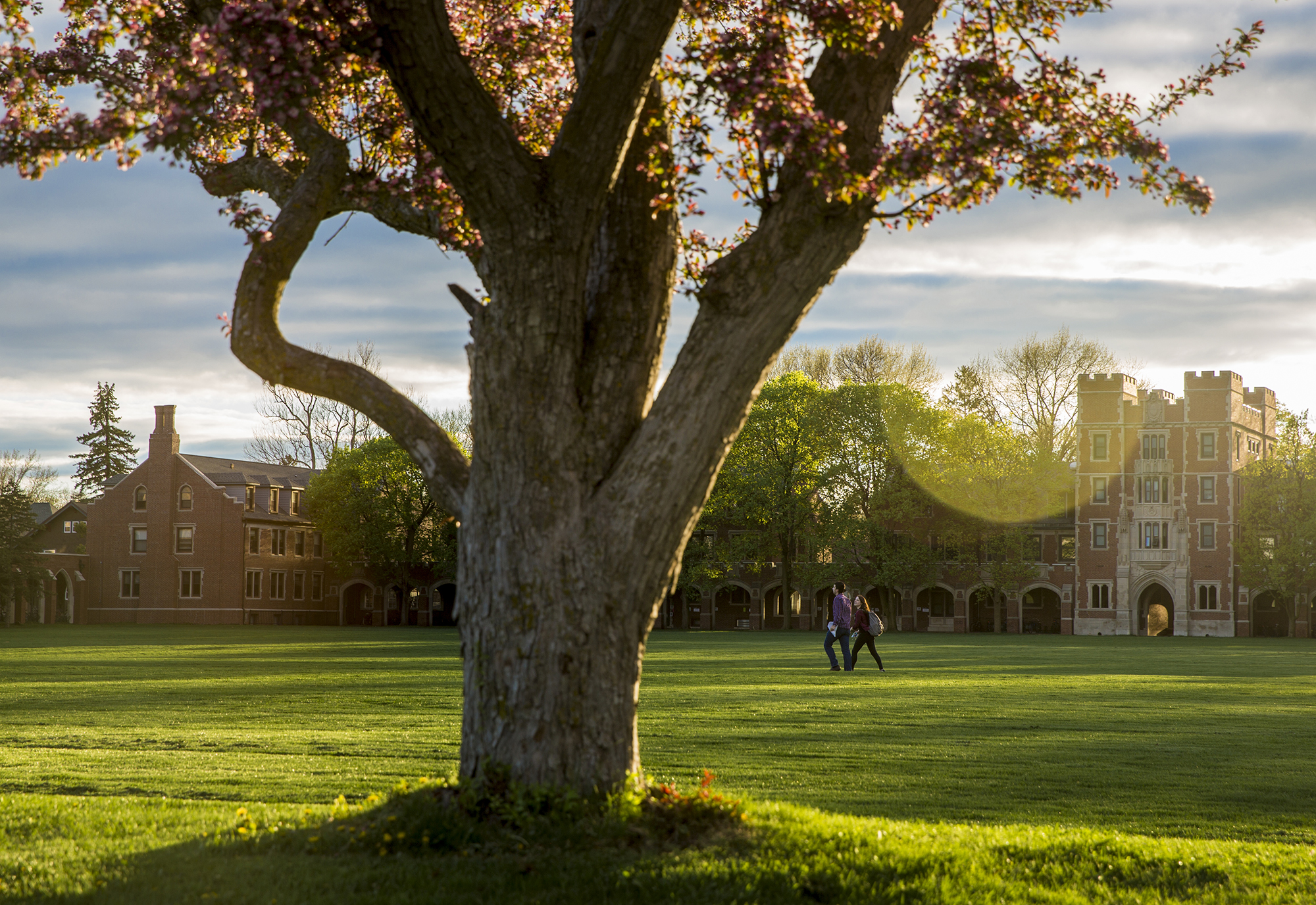 Two students cross Mac Field at sunset, with a crabapple tree in the foreground
