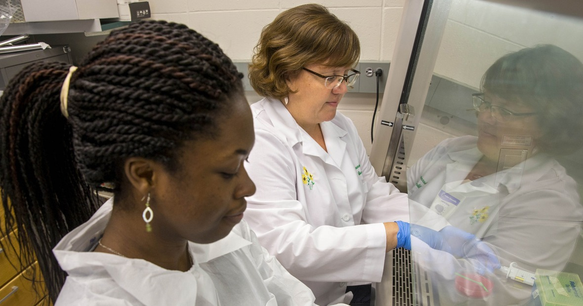 Queenster Nartey and Shannon Hinsa-Leasure work in a fume hood.