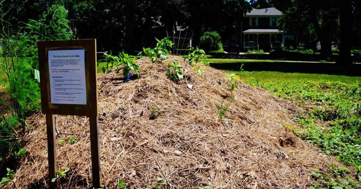 Hugel bed -- a large pile of decaying plant debris planted like a raised bed