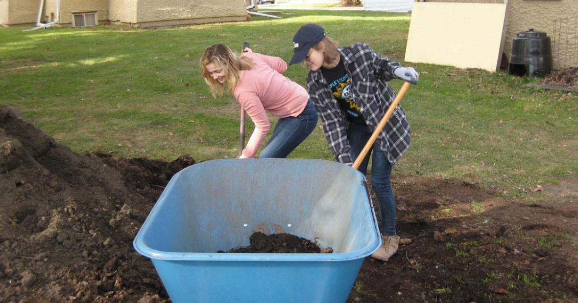 Students filling large wheelbarrow with rich, dark compost