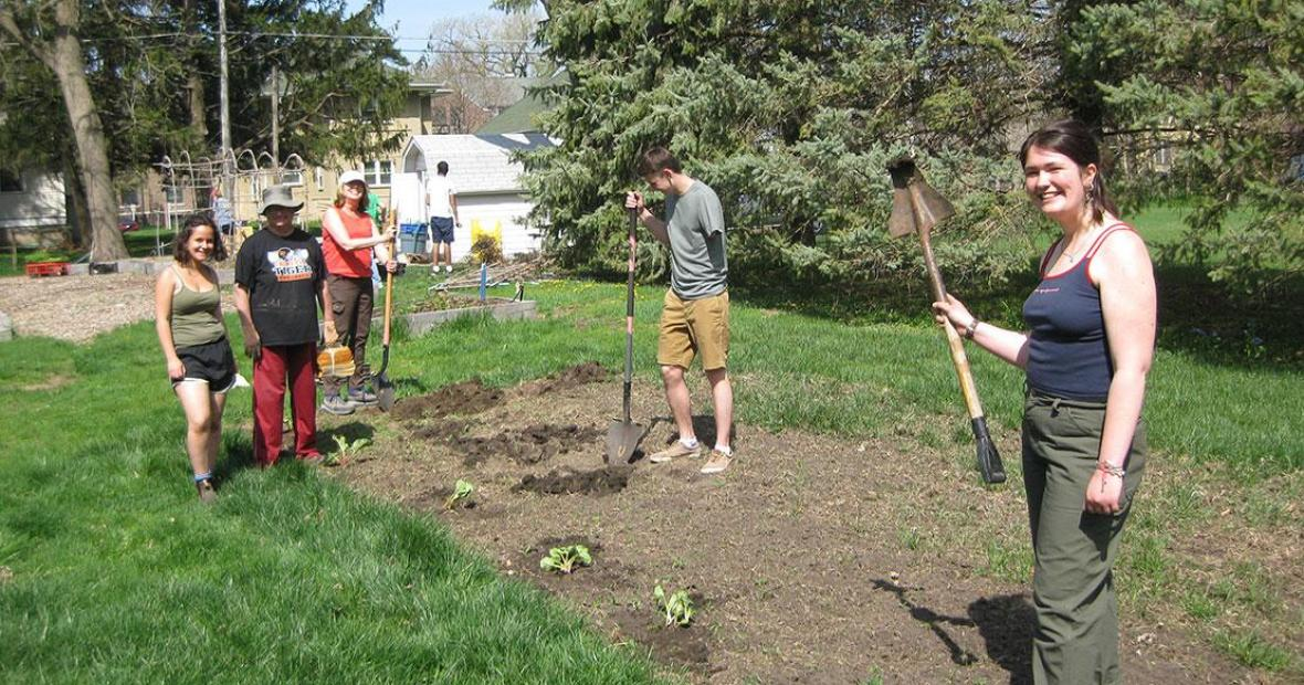 Crew charged with planting rhubarb and asparagus plants working on adding a second row of plants