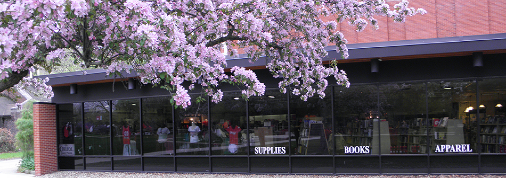 Exterior of the bookstore with a tree in bloom