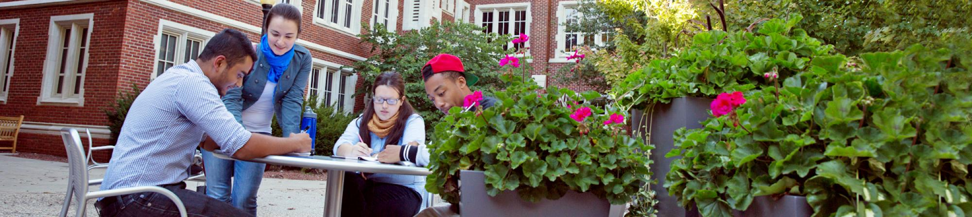 Students in an outdoor discussion
