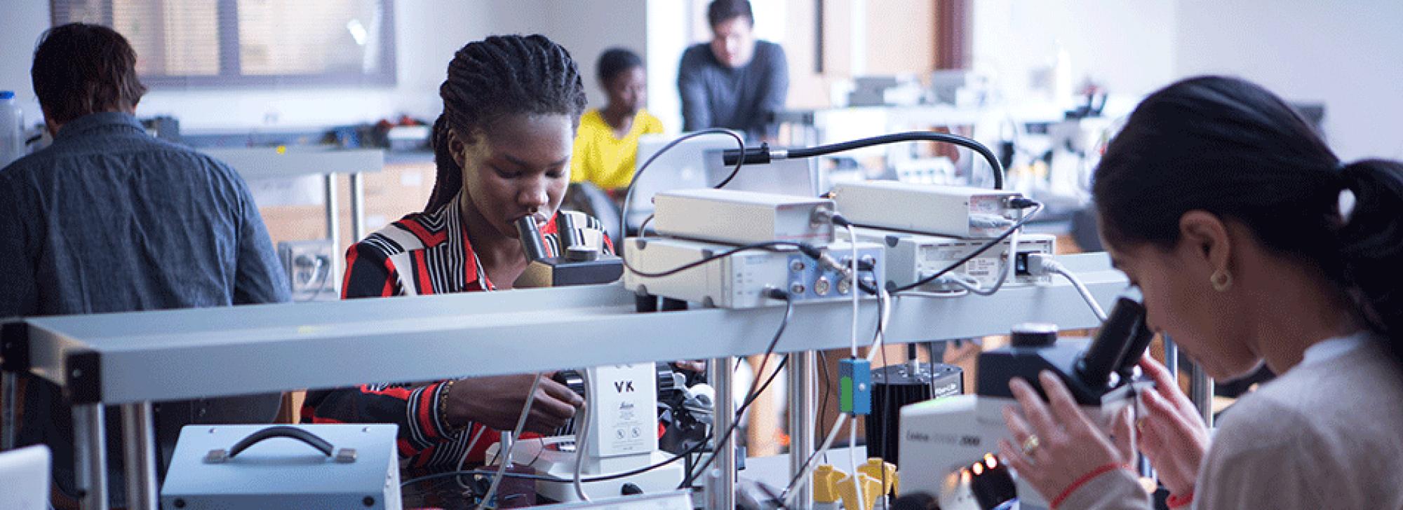 Students examining specimens on microscopes