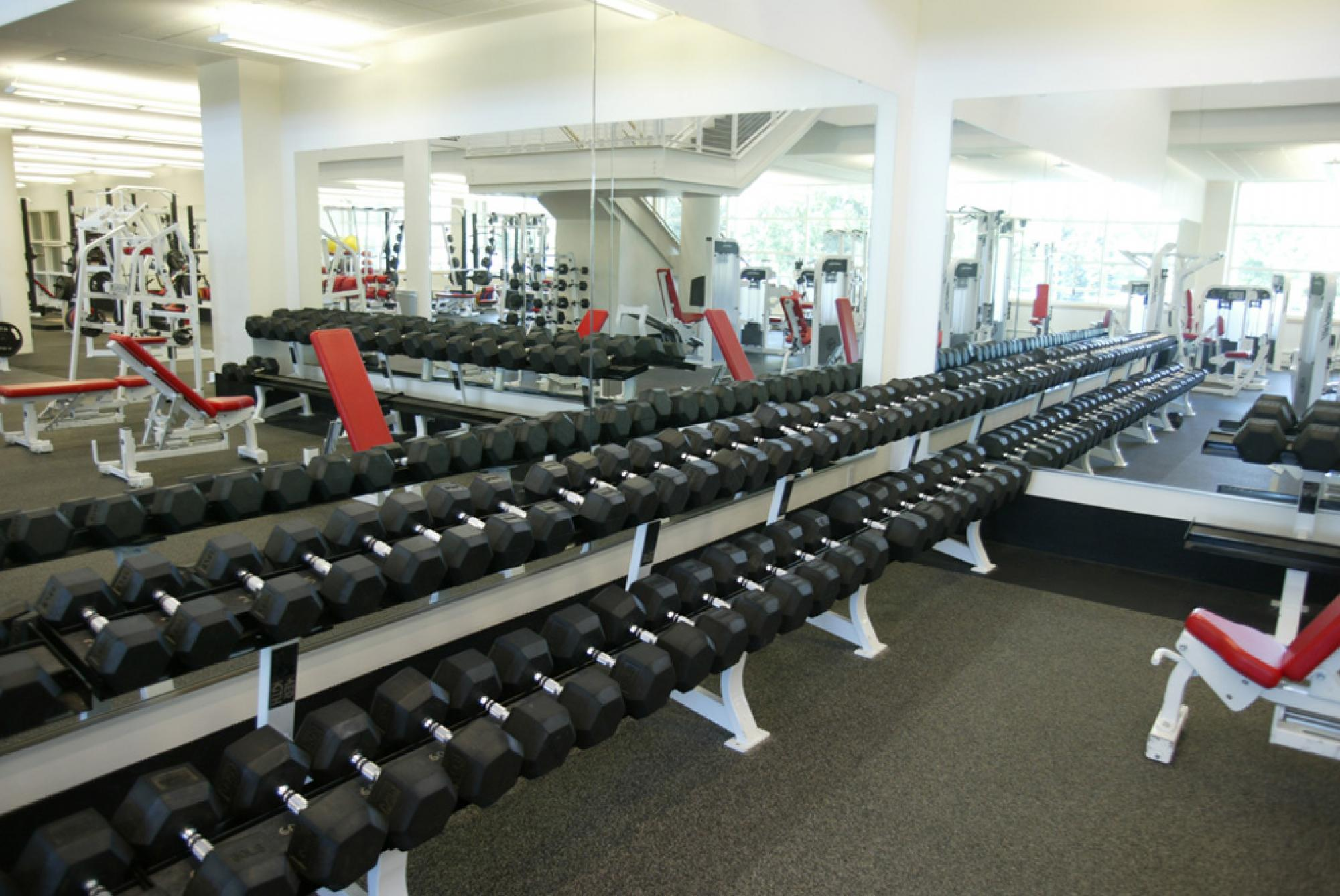 Weigth area in the Fitness Center