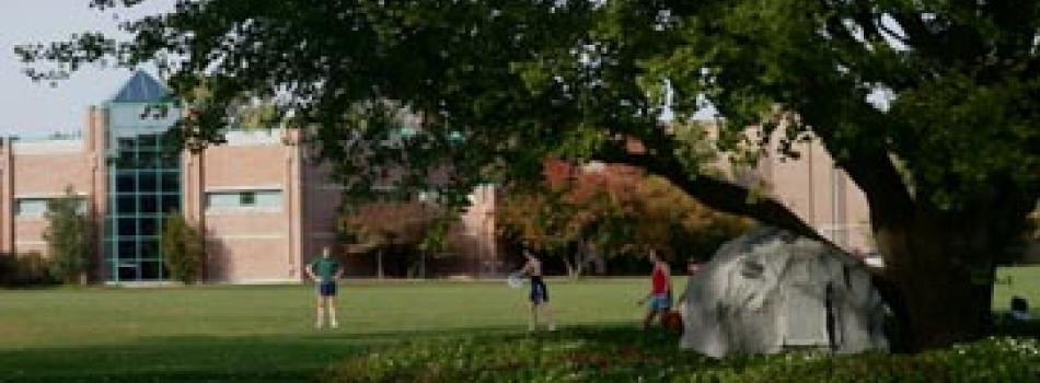 Ward Field