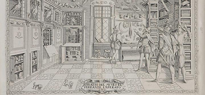detail showing men viewing wunderkammer