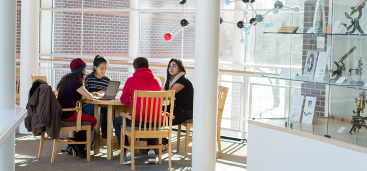 Students studying with light streaming in the full-length windows.