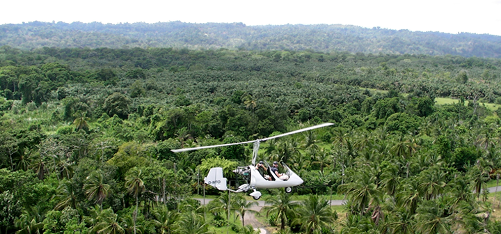 The Steins ride in a helicopter over the rain forest