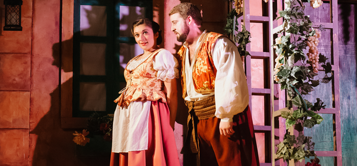 Scene from Elixir of Love, Des Moines Metro Opera, Opera Iowa
