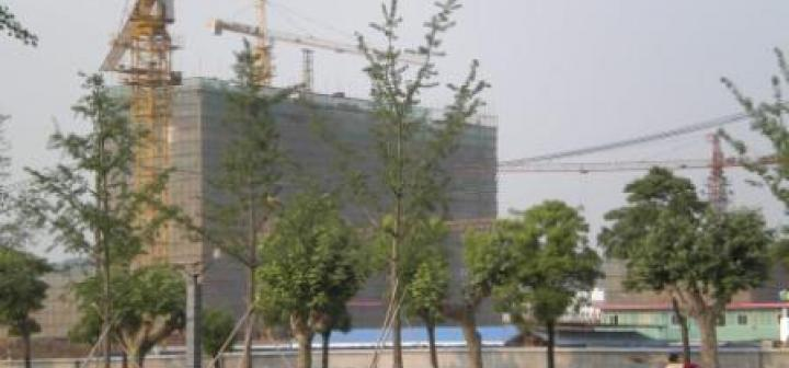 Construction cranes and scaffolding at Nanjing University's new campus