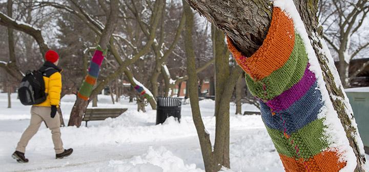 Person walking through snowy Peace Grove