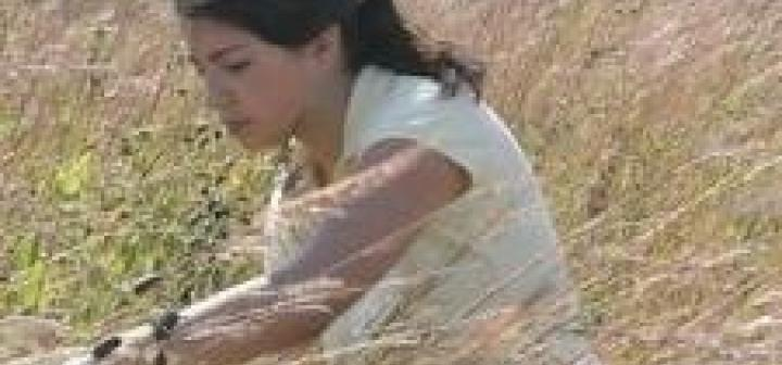 Student examines prairie grass