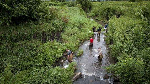 Students collect samples in creek