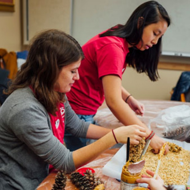 Two students make bird feeders out of pinecones