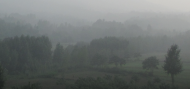 Grey, misty landscape image