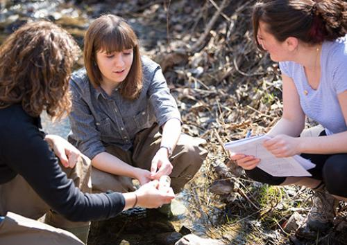 Three students take water samples in a creek