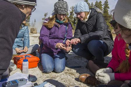 A group of students perform water tests in Yellowstone National Park