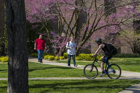 Two students walk and one student bikes near Steiner Hall
