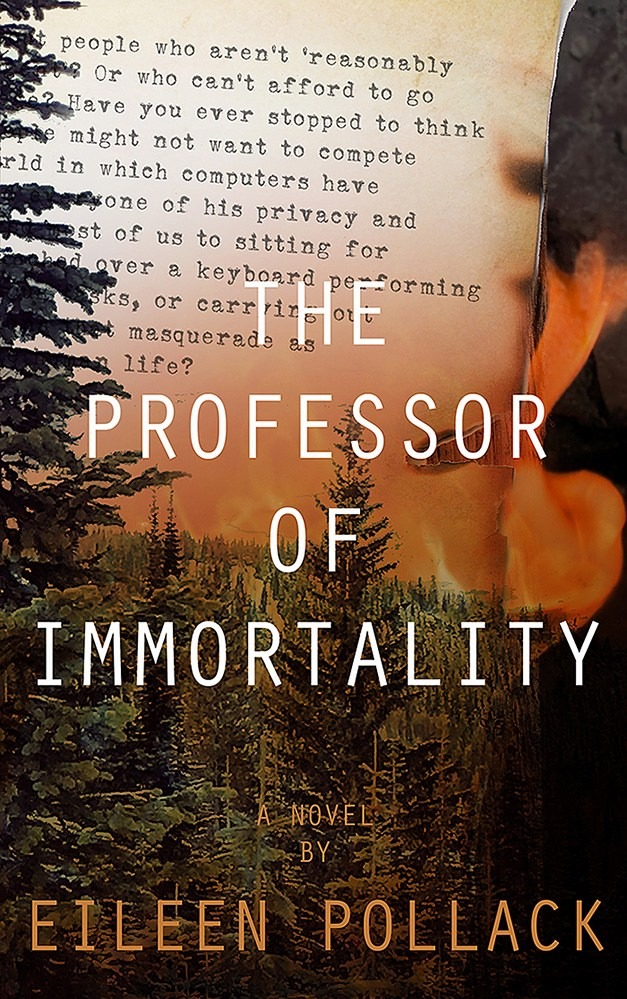 Book Cover image of The Professor of Immortality, novel by Eileen Pollack