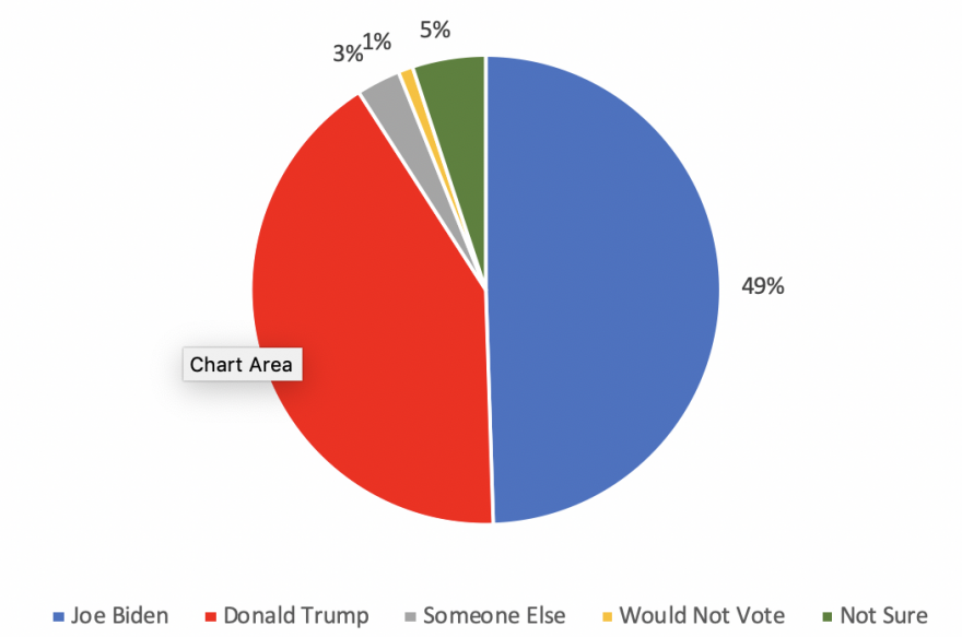 Pie chart shows 49% support Biden, 41% support Trump, 3% support someone else, 1% would not vote, and 5% are not sure