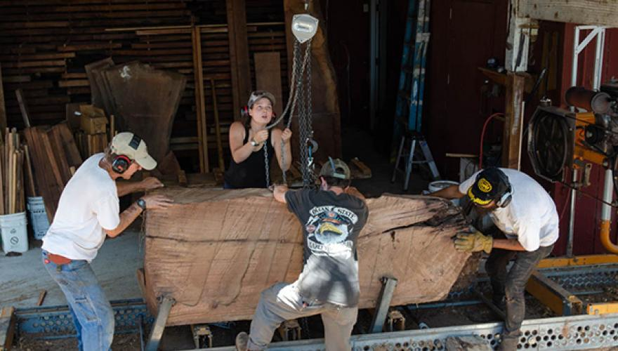 Isabella Kugel '20 uses chains to move wood with a crew