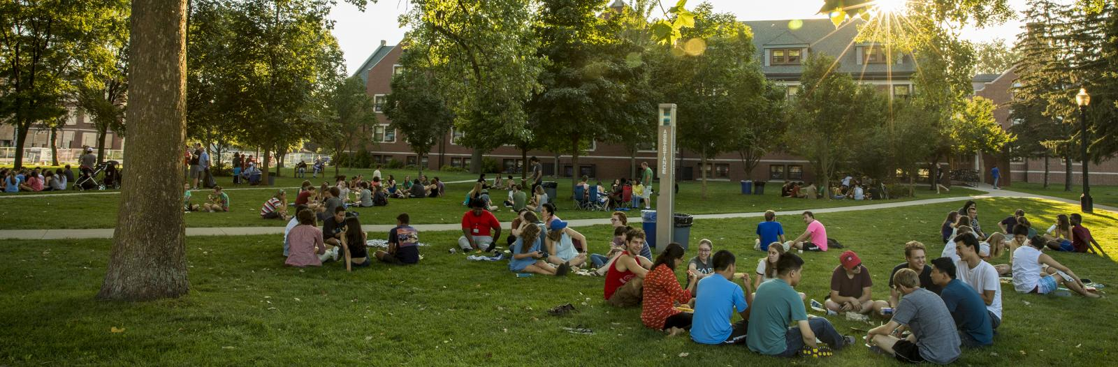All-campus picnic to wrap up NSO events before school