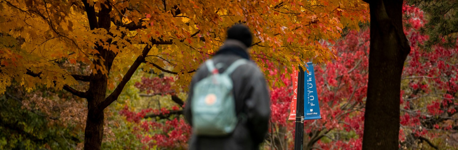Students walk on campus with colorful fall leaves