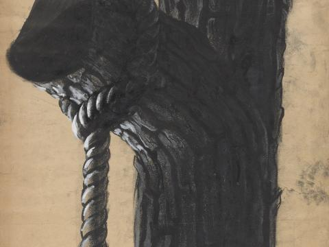 Detail of a branch and rope