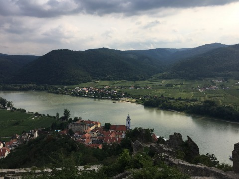 Aerial view of a village on the Danube in Austria