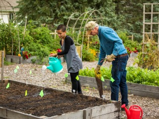 Student and Jon Andelson water plants in a raised bed in the garden