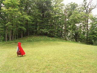 figure in red riding hood in a clearing by a forest