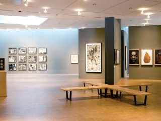 Faulconer Gallery exhibition: For Campus and Community