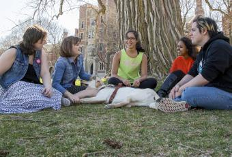 Lucy Sidi '18, Deqa Aden '18, and Leina'ala Voss '18 sit under a tree with Lucy's service dog and two friends