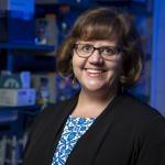 Professor Shannon Hinsa-Leasure in her lab