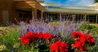 Summer flowers bloom in front of the Bucksbaum Center for the Arts