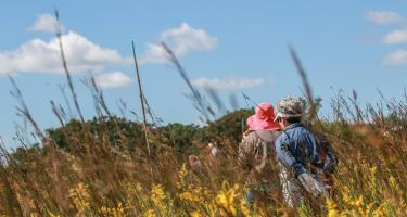 Visitors to the Conard Environmental Research Center meander through maze-like pathways