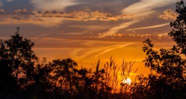 Prairie sunset