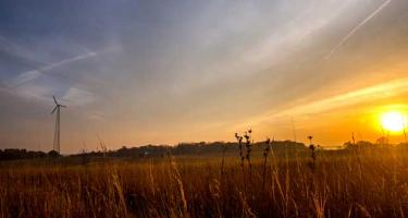 Dry prairie in foreground, with tree line and beautiful sunset behind