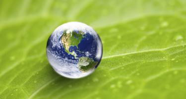 The Earth reflected in a water droplet on a bright green leaf