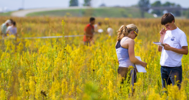 Students study the prairie at the Conard Environmental Research Area (CERA)